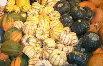 Lists multiple different types of squash with pictures.  Just in case you've ever wondered what you have.  Links to recipes.