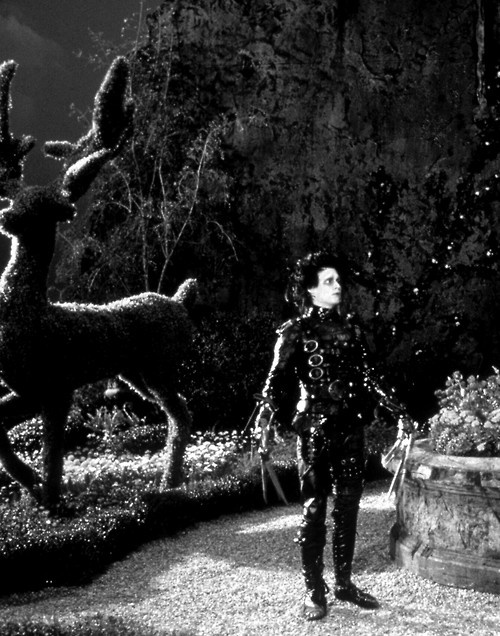✂Edward Scissorhands