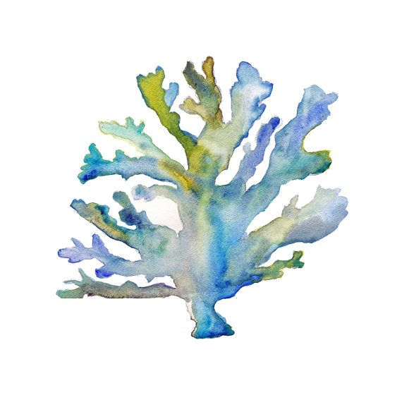 Coral Watercolor Print.    This is an archival quality print of my original watercolor.    Your print comes lightly signed and dated below the