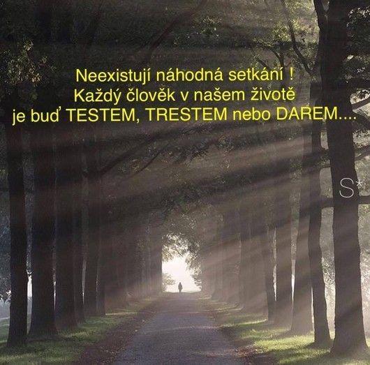 Z Pardubického kraje, kolem 50 let   Lide.cz