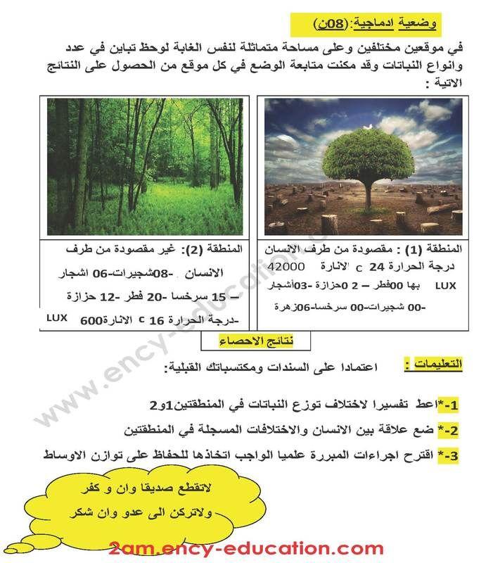 Picture Pictures Plants Education