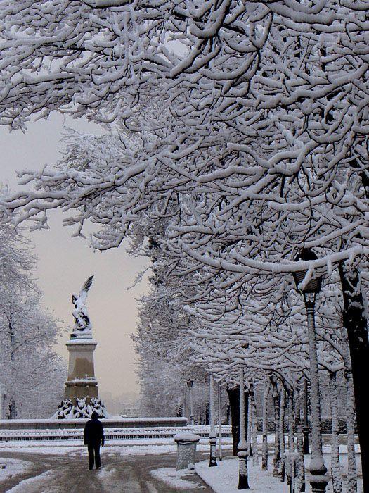 Invierno en el Parque del Retiro. Madrid. ESPAÑA