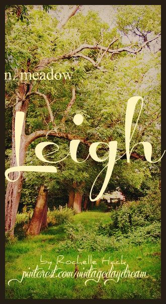 Baby Girl Name: Leigh (lee). Meaning: Meadow. Origin: Hebrew; Old English. https://www.pinterest.com/vintagedaydream/baby-names/