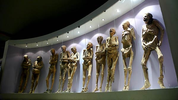 ... Guanajuato mummy museum  (Daniel Jayo / Associated Press ) in central Mexico, where you'll find more than 100 mummies exhumed from a Guanajuato cemetery between 1870 and 1958. In 1870, a local law required families to pay a tax to ensure that their deceased loved ones stayed buried. The penalty for not paying was disinterment.: De Guanajuato, Law Requir, Mummy Museums, Ancient Mummy, Guanajuato Mexico, Egyptian Mummy, Central Mexico, Bizarre Places, Local Law