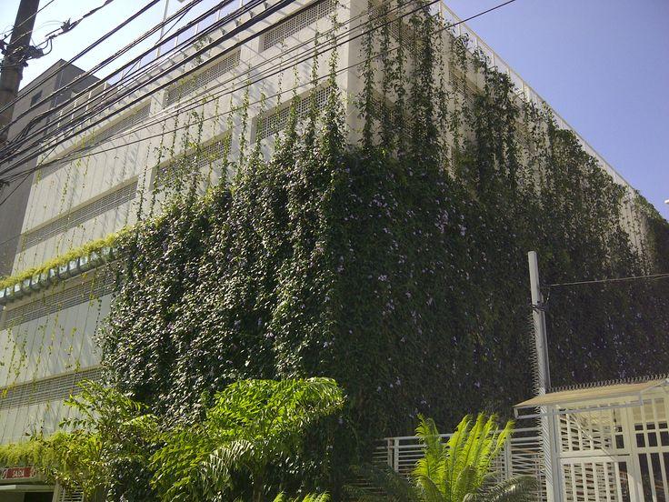 Brise Vegetal Ecotelhado em São Paulo