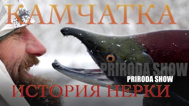RIRODA SHOW. Камчатка. История нерки. ЮКЗ. Камчатка/ YKZ Kamchatka 2016.