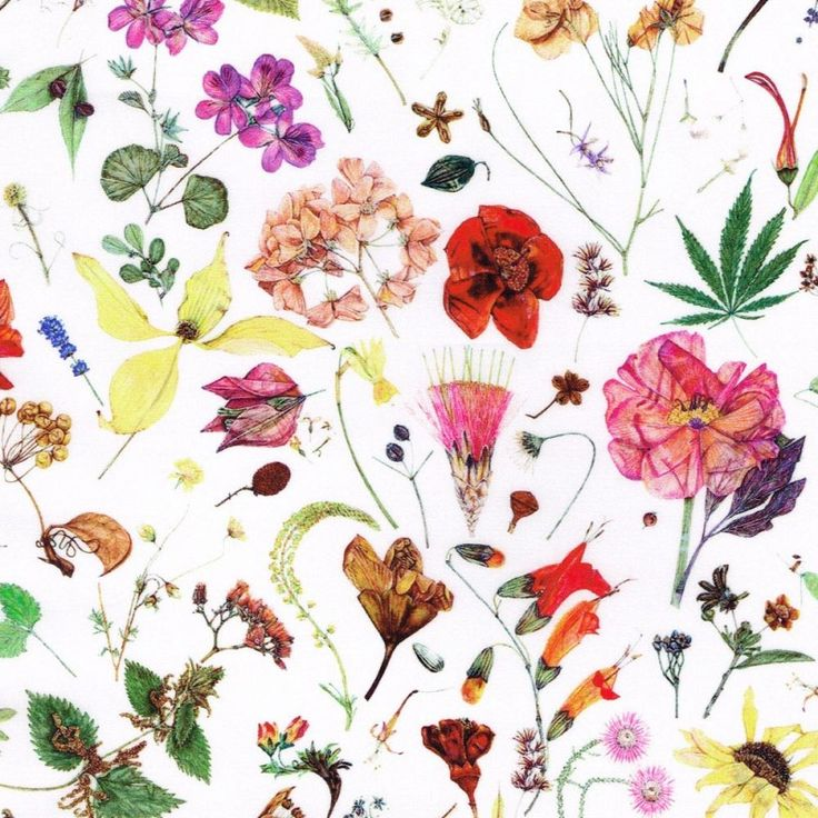 The beautiful Floral Eve Liberty fabric http://www.alicecaroline.co.uk/product/liberty-floral-eve-d/
