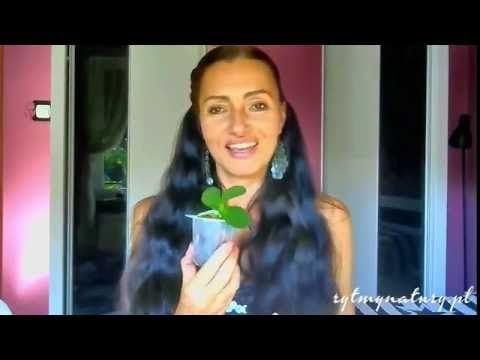 przesadzanie storczyków - YouTube  #rytmynatury #przesadzanie #storczyków #storczyki #orchidea #phalaenopsis