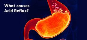 The stomach produces and stores acid that helps in food digestion. There are times when this acid flows back from the stomach to the esophagus; a tube that allows the movement of food from the throat to the stomach. Acid reflux occurs when the tube is not strong enough to handle the acid. The common symptoms of acid reflux attacks are indigestion, nausea and heartburn. Heartburn leaves a burning sensation in the chest when it occurs a number of times continually. The foods that flare up the…