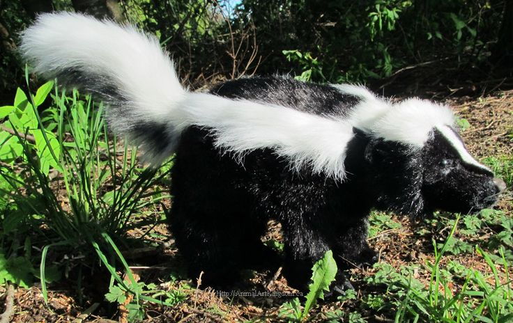 Realistic Skunk Wild Rodent Faux Taxidermy Plush Stuffed Animal Toy Poseable Art Doll by AnimalArtKingdom on Etsy