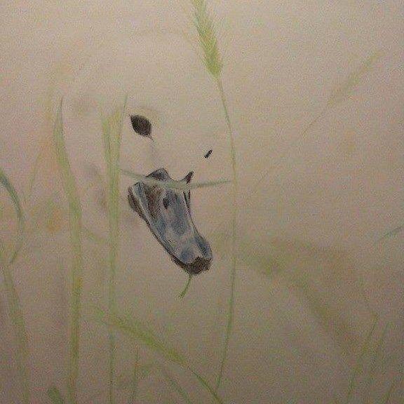 Baby swan by Mampower1.deviantart.com on @DeviantArt