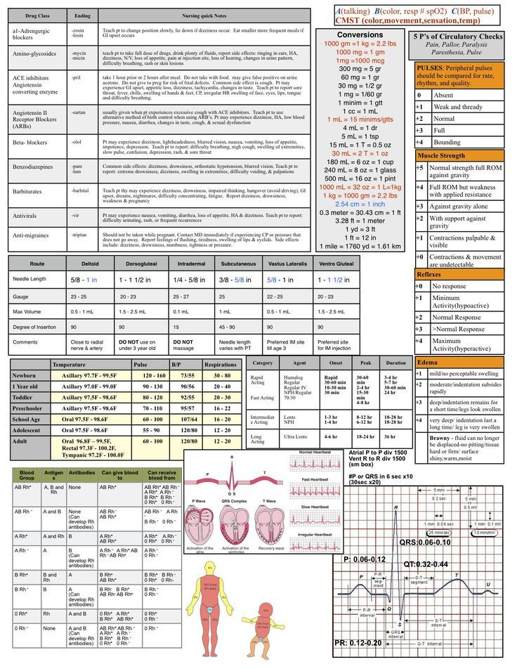 Best 25+ Nursing physical assessment ideas on Pinterest Health - physical exam template