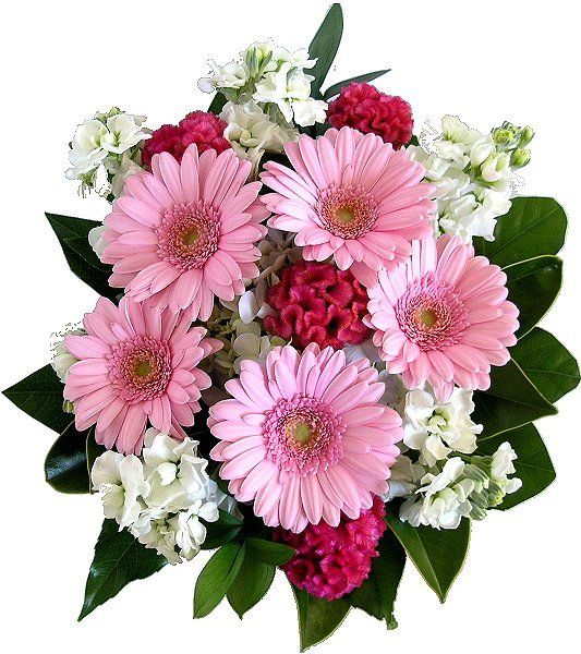Pink Floral | ... Gift Baskets NZ wide delivery: Pretty Pink and White Flower Bouquet