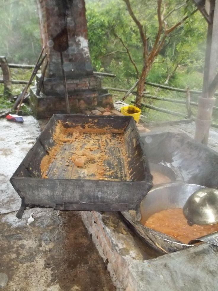 Batea con panela en proceso en Trapiche de finca de la vereda Alto Cáceres.