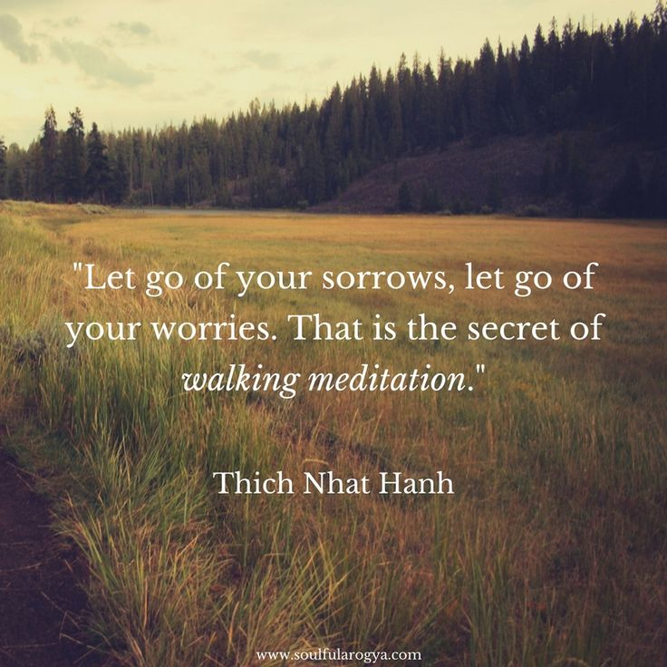 Thich Nhat Hanh on Walking Meditation (Quote)