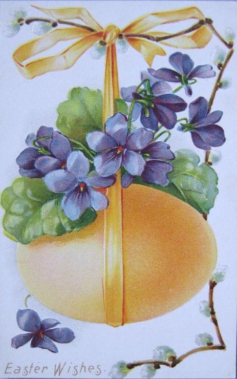 159 Best Vintage Violets Images On Pinterest Vintage