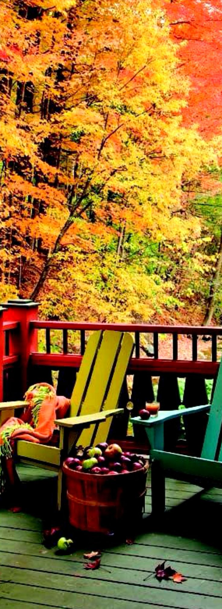Fall and Apple Hill just go together.