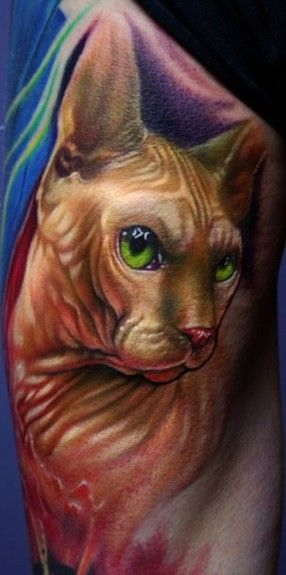 95 best pet tattoos images on pinterest for Hairless cats with tattoos