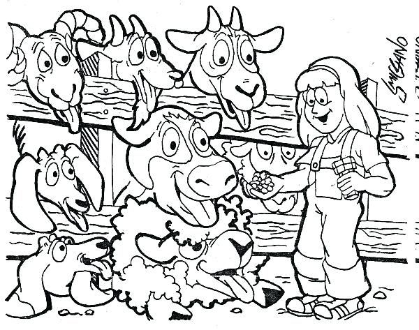 Petting Zoo Coloring Pages Coloring Pages For Kids In 2019 Zoo