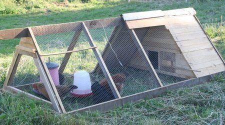 Permaculture/tracteur à poules