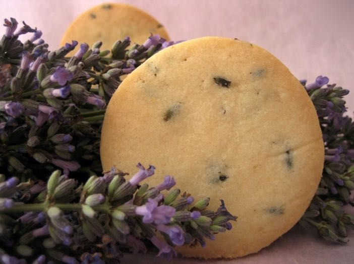These easy to make lavender biscuits are perfect with a mid-morning cup of coffee or as a gift to a friend tied up in cellophane