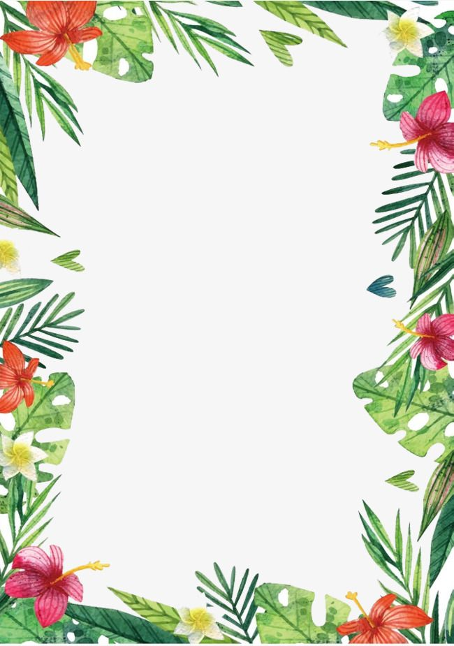 Clip Art Flower White Border Hawaiian And Black