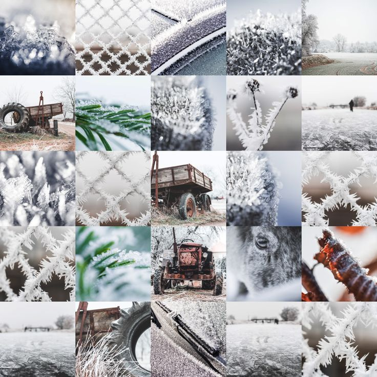 frozen-wonderland-collection-collage-small