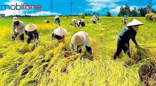 Tìm hiểu thông tin về dịch vụ Bạn nhà nông của Mobifone  Tìm hiểu dịch vụ Bạn nhà nông của Mobifone giúp các thuê bao đăng ký thành công dịch vụ để nắm được thông tin thị trường nông sản, mẹo hay nông nghiệp  Các thuê bao Mobifone là nông dân, chủ doanh nghiệp sản xuất kinh doanh nông nghiệp, nông sản vừa và nhỏ, cán bộ nông nghiệp…
