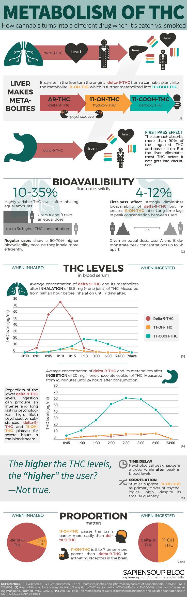 Human Metabolism of THC