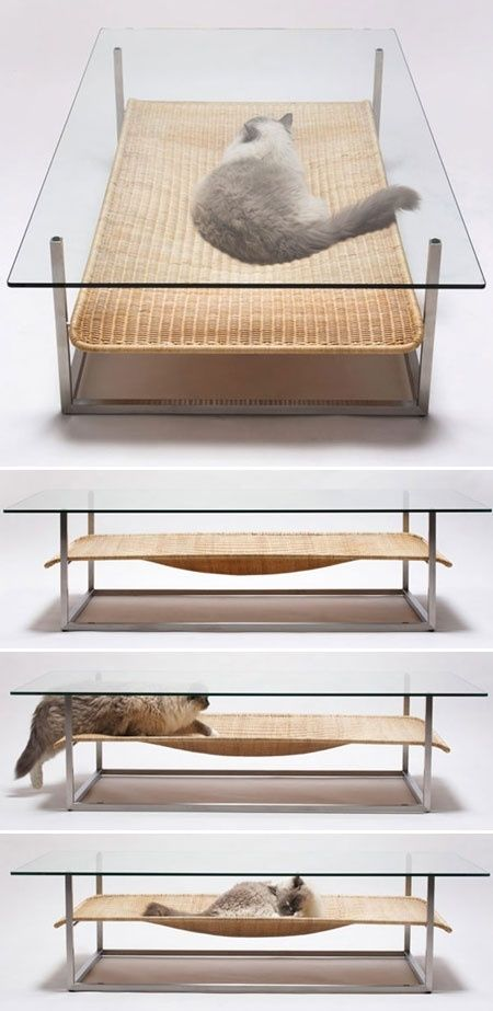 """Not sure how I feel about the glass top...hard to focus on watching tv when your cat is """"bathing"""" under your coffee table..."""