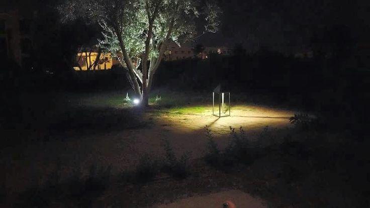 Gardens in the dark