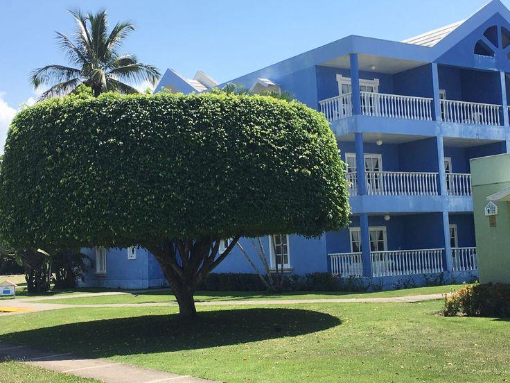 Anlage vom Hotel Puerto Plata Village *** - Playa Dorada - Puerto Plata - Dom Rep