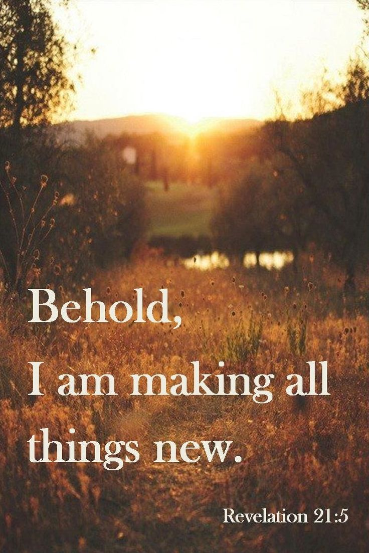 Behold, I am making all things new. Revelation 21:5.