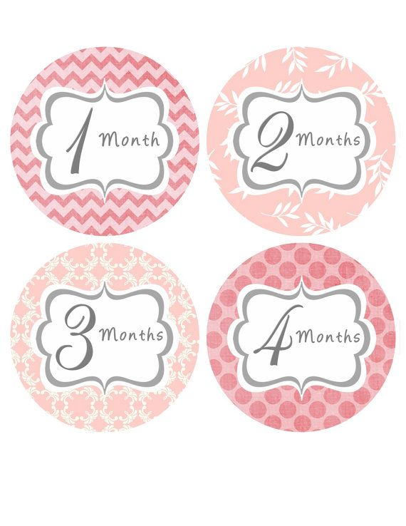 Baby Month Stickers Baby Girl Monthly by BumpAndBeyondDesigns