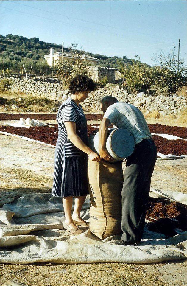 Οι Αρχάνες - RETRONAUT - LiFO  Η συλλογή της σταφίδας, 1980 Μαρία και Γιάννης Μπετεινάκης