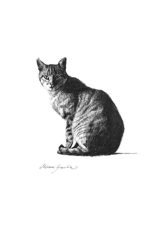 THE MOST Poor Cat is a Masterpiece II  - original drawing in ink pen on paper  by Milena Gawlik, Black & White