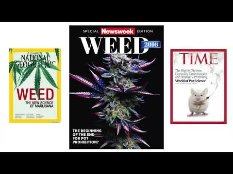 Introducing The Australian Medicinal Cannabis Observatory - Associate Professor David Caldicott - YouTube