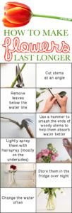 #12. Keep your cut flowers lasting twice as long! -- 13 Clever Flower Arrangement Tips & Tricks