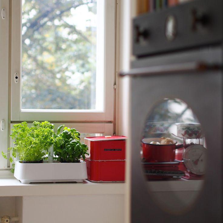 Keittiö / Kitchen / Smeg oven / Fiskars Herbgarden  SATEENKAARIA JA SERPENTIINIÄ: PÄIVÄ NUMERO 7 - HE OVAT HENGISSÄ VIELÄ