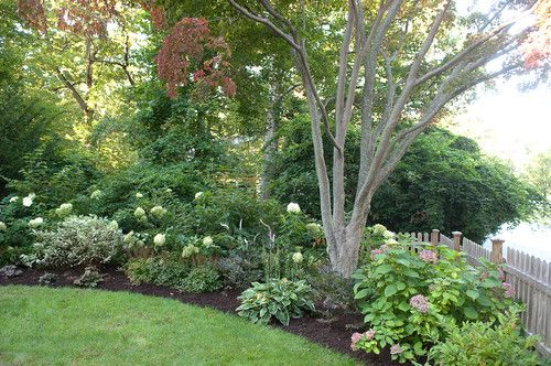 Hydrangeas, Hostas, & Other Shade-Tolerant Plants, Shrubs & Trees Round Out The Shady Corner of   This Yard...  (by Westover Landscape Design, Inc.)