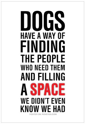 Rover 99 - *Dogs Have A Way | Poster