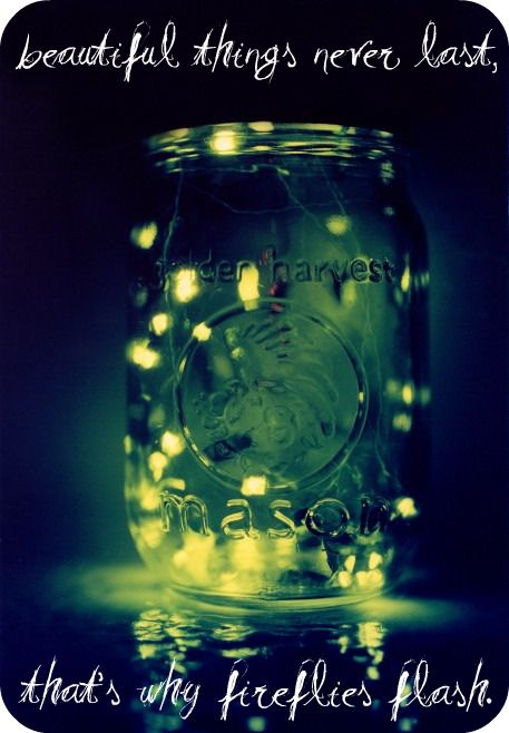 """""""Beautiful things never last, that's why fireflies flash."""" - Fireflies by Ron Pope"""