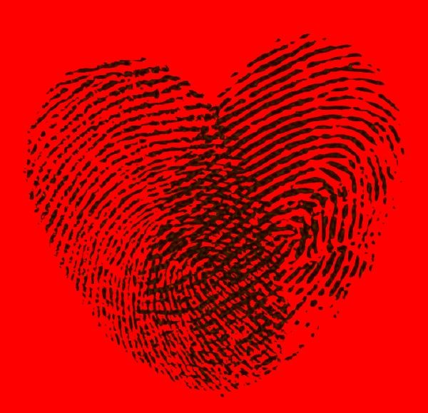 Linie papilarne serca