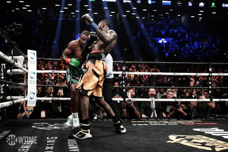I'm ready For Anthony Joshua' Deontay Wilder Announced After Knocking Out Luis Ortiz