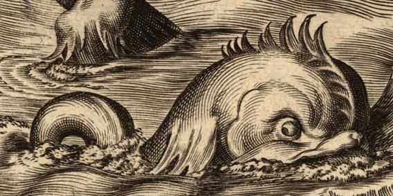 fish-150dpi1.jpg (568×284)
