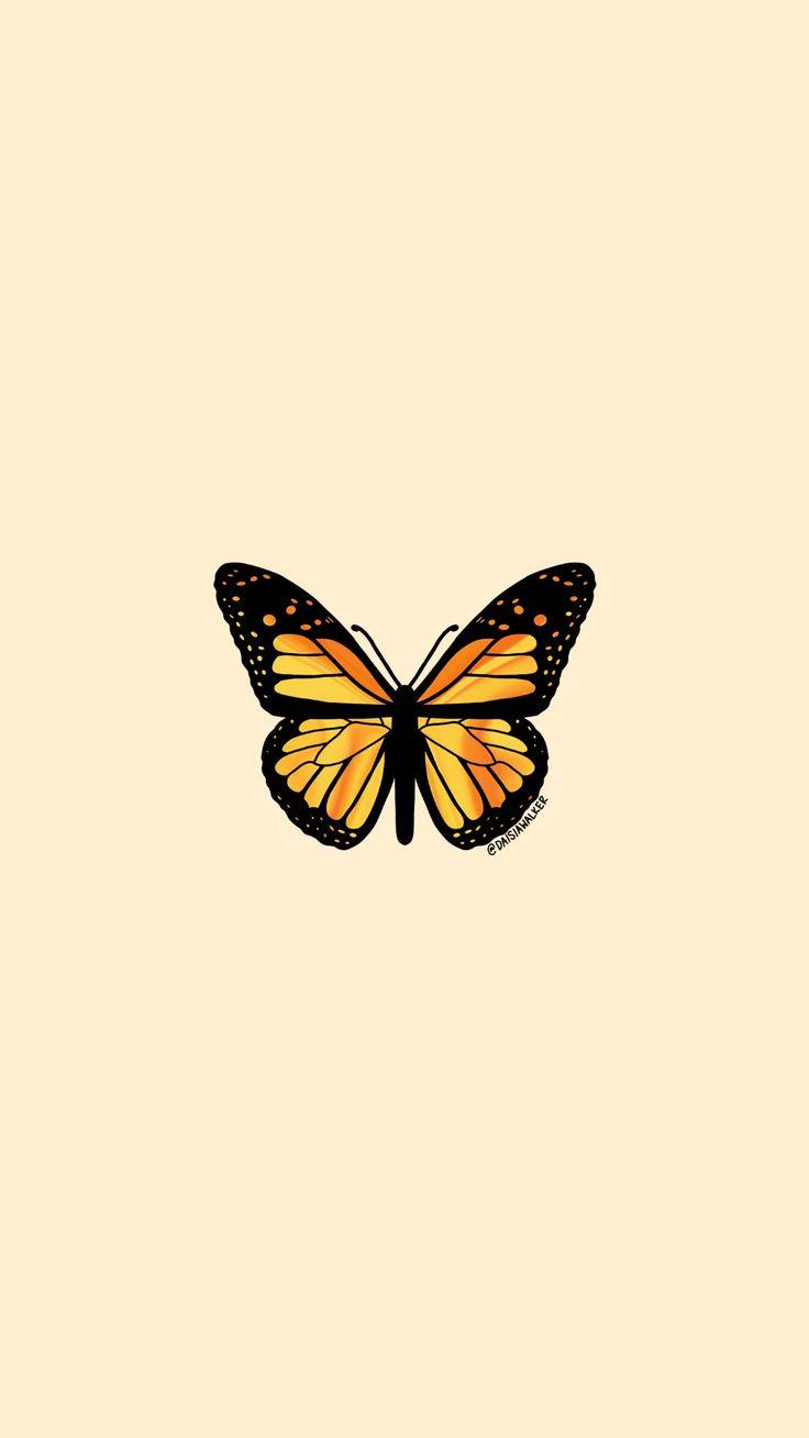 Yellow Orange Butterfly   Butterfly wallpaper iphone ...