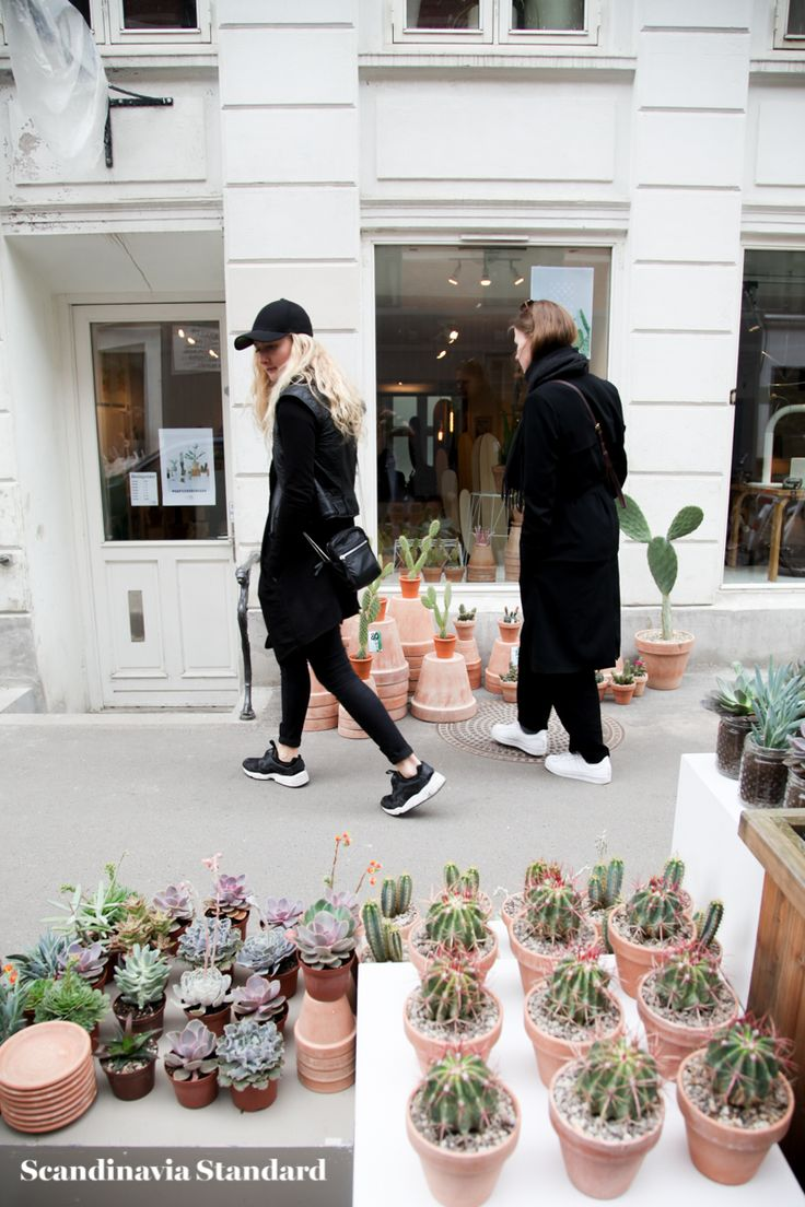 Kaktus Copenhagen - Street Style - Peeping in the store on Jægersborggade | Scandinavia Standard