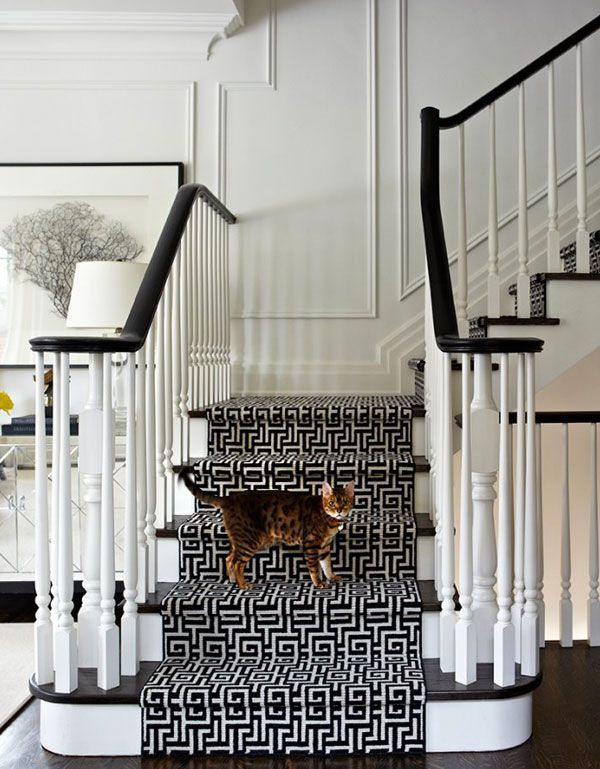 Look at how this geometric stair runner  brings life to a traditional space.  Or maybe I just love the leopard looking kitty!