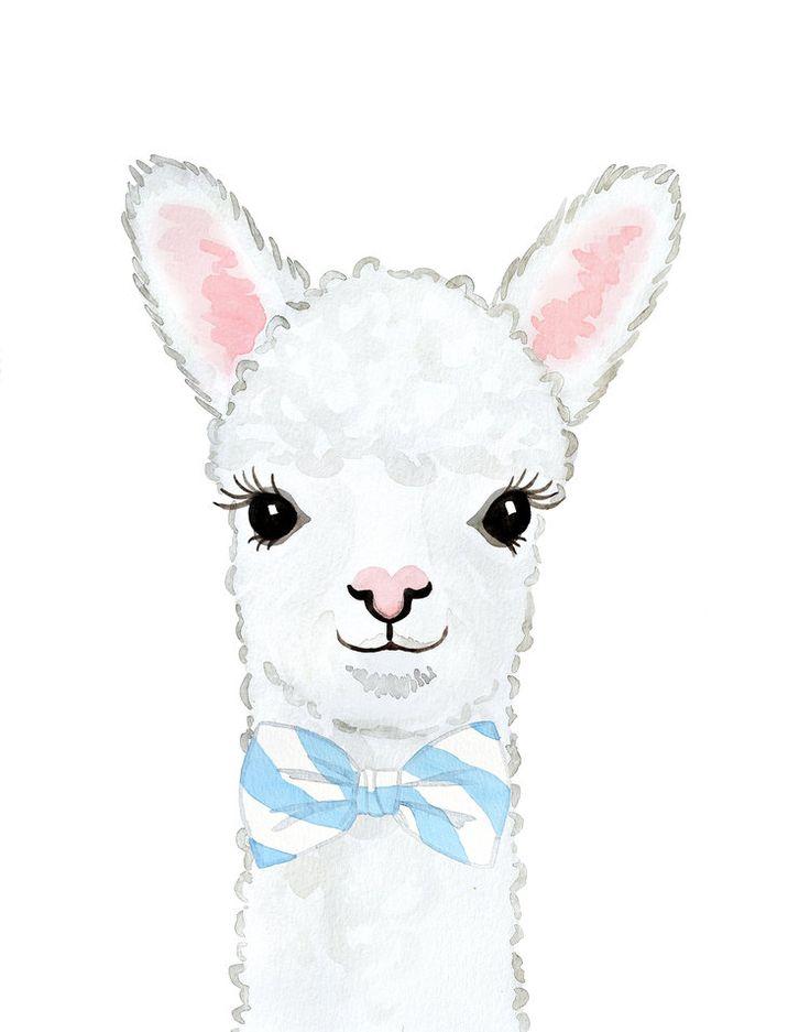 alpaca3  bowtie  small  tiere malen lama zeichnung