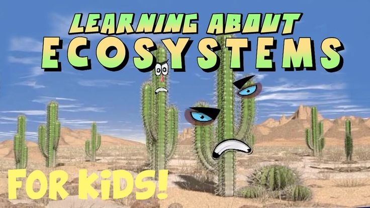 Join Mr. DeMaio in this cool video for children about different types of ecosystems. He will visit a few of his cool friends on his way to a desert, ocean, w...